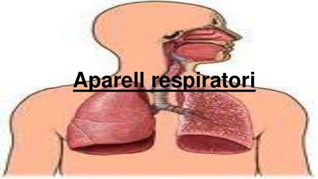 Aparell respiratori