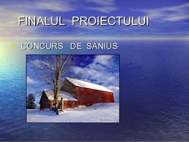 FINALUL PROIECTULUIFINALUL PROIECTULUI • CONCURS DE SANIUSCONCURS DE SANIUS