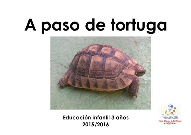 A paso de tortuga Educación infantil 3 años 2015/2016