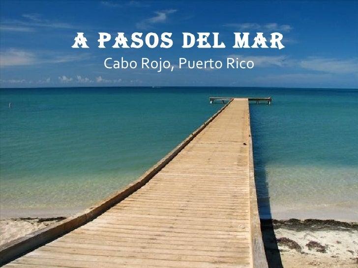 www.apasosdelmar.com A pasos del mar Cabo Rojo, Puerto Rico