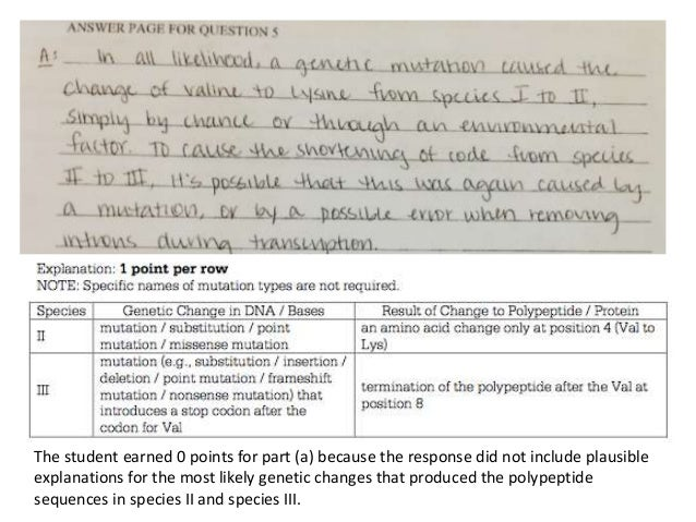 wjec english literature gcse past papers made essay essay about ap biology practice essay questions