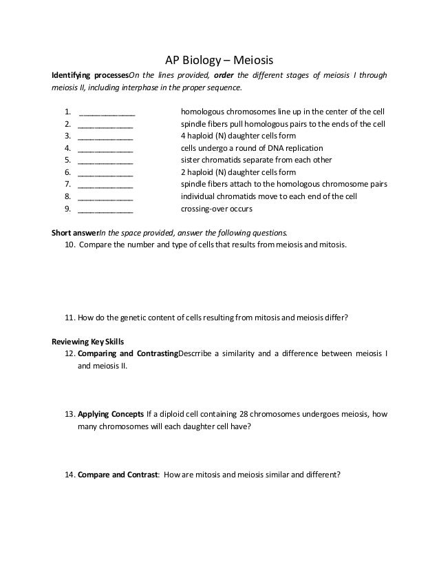 meiosis worksheet answers key Termolak – Meiosis Worksheets