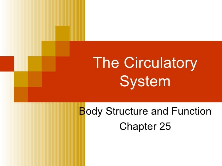 The Circulatory System Body Structure and Function Chapter 25