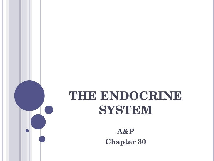 THE ENDOCRINE SYSTEM A&P Chapter 30