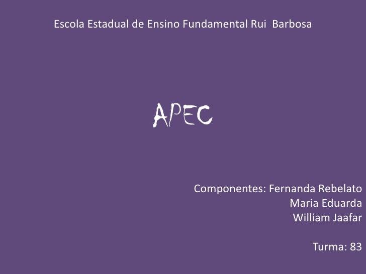 Escola Estadual de Ensino Fundamental Rui  Barbosa <br />APEC<br />Componentes: Fernanda Rebelato<br />                   ...