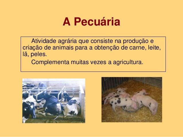 A Pecuária Atividade agrária que consiste na produção e criação de animais para a obtenção de carne, leite, lã, peles. Com...