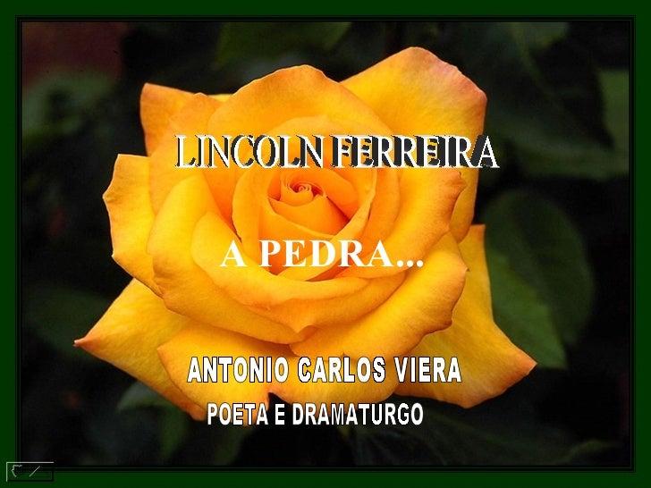 LINCOLN FERREIRA  A PEDRA...   ANTONIO CARLOS VIERA  POETA E DRAMATURGO