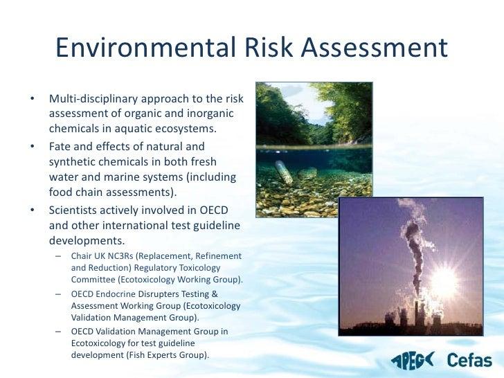 Chemical Risk Assessment - APEG