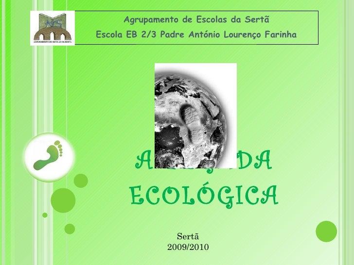 A PEGADA ECOLÓGICA Agrupamento de Escolas da Sertã Escola EB 2/3 Padre António Lourenço Farinha Sertã 2009/2010