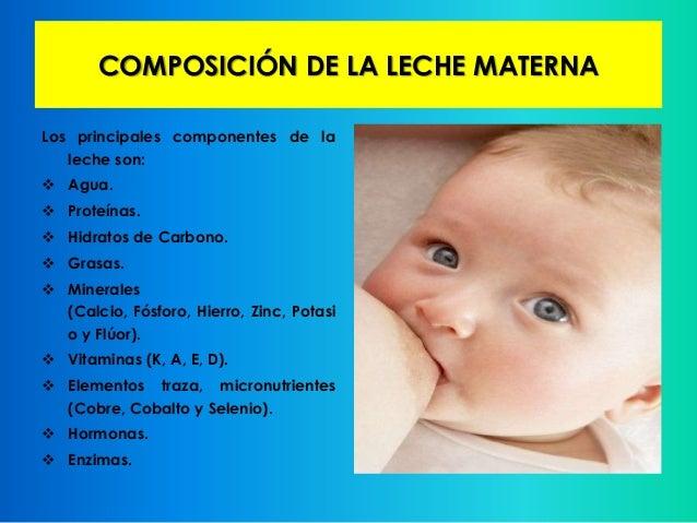 Apego y lactancia materna - Alimentos para producir leche materna ...