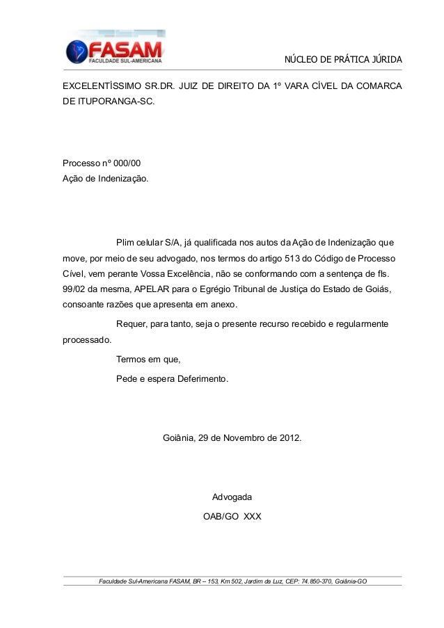 NÚCLEO DE PRÁTICA JÚRIDA EXCELENTÍSSIMO SR.DR. JUIZ DE DIREITO DA 1º VARA CÍVEL DA COMARCA DE ITUPORANGA-SC.  Processo nº ...