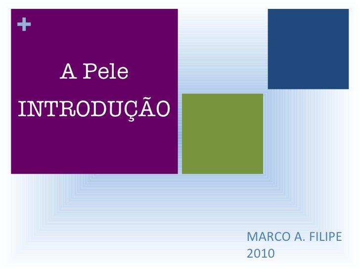 MARCO A. FILIPE 2010 A Pele INTRODUÇÃO +