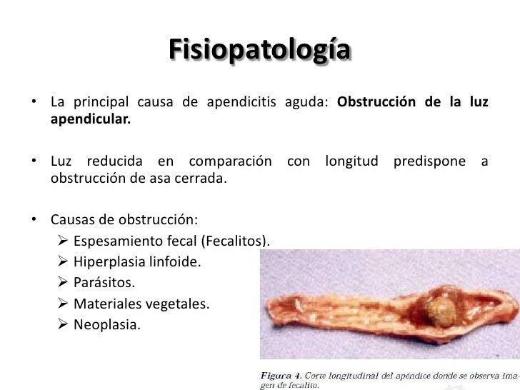 Fisiopatología• Obstrucción de la luz apendicular favorece la proliferación  bacteriana. La Secreción ininterrumpida de mo...