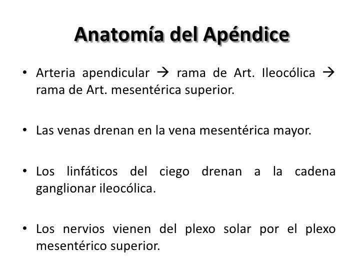 Anatomía del Apéndice• Arteria apendicular  rama de Art. Ileocólica   rama de Art. mesentérica superior.• Las venas dren...