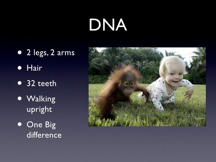 DNA • 2 legs, 2 arms • Hair • 32 teeth • Walking   upright • One Big   difference