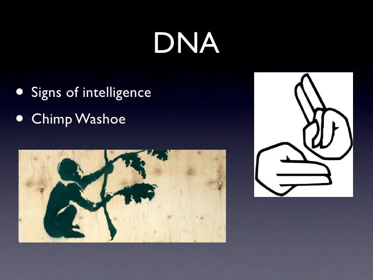 DNA • Signs of intelligence • Chimp Washoe