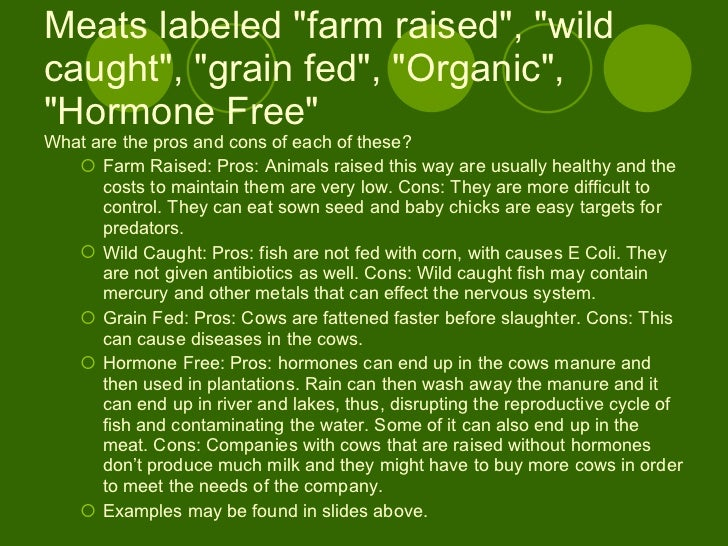 Organic and non organic food essay