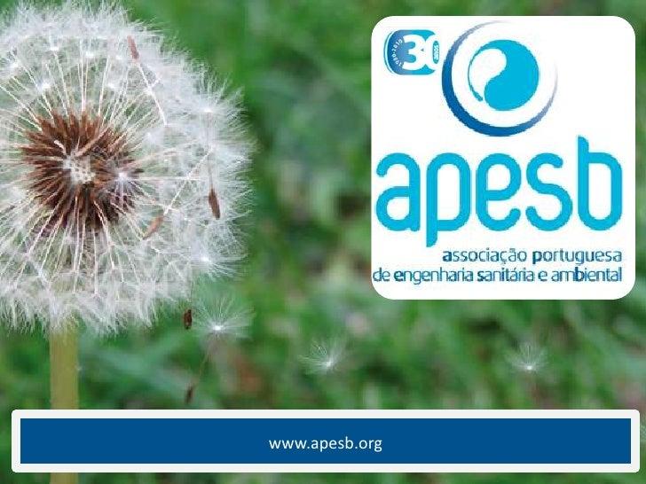 www.apesb.org <br />