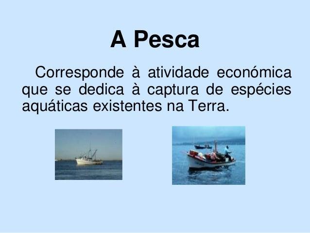 A Pesca Corresponde à atividade económica que se dedica à captura de espécies aquáticas existentes na Terra.