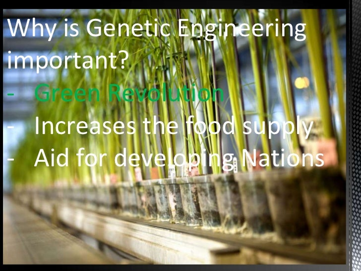 Is Genetic Engineering Of Food Crops Good Or Bad