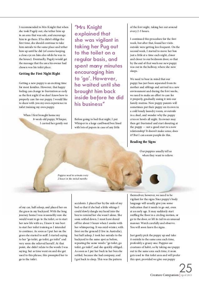 https://image.slidesharecdn.com/apetcaremagazine-publishbyrutaksharawat-150104231335-conversion-gate01/95/a-pet-care-magazine-publish-by-rutaksha-rawat-25-638.jpg?cb\u003d1420434988