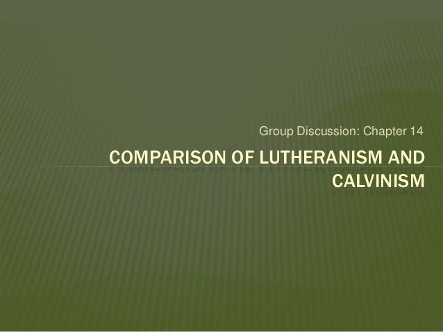 compare and contrast lutheranism and calvinism essay