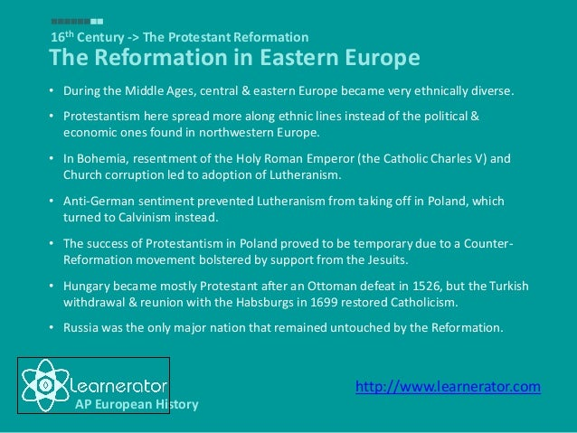 essay questions on the protestant reformation Renaissance essay questions compare and contrast the  assess the  extent to which the protestant reformation promoted new exceptions about.