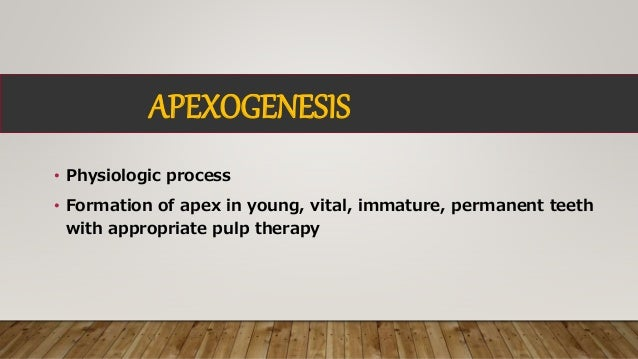 Apexification and Apexogenesis Slide 2
