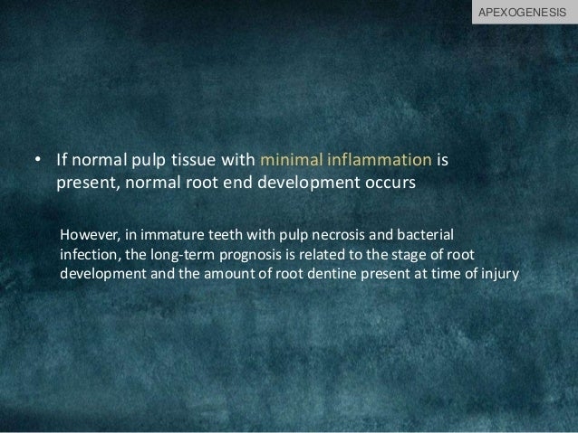 • If normal pulp tissue with minimal inflammation is present, normal root end development occurs However, in immature teet...