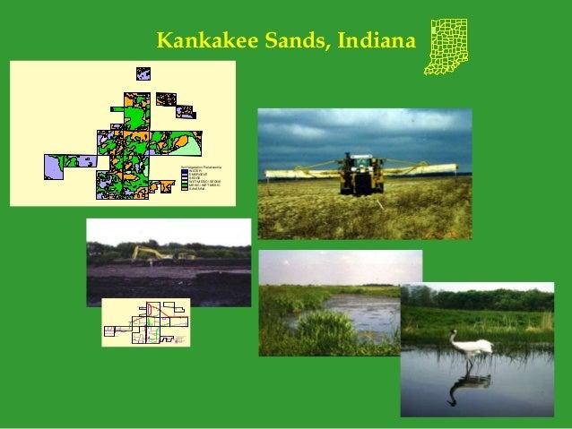Kankakee Sands, Indiana Junk.shp Soil/Vegetation Relationship WATER EMERGENT SEDGE WET MESIC/ SEDGE MESIC/ WET MESIC SAVAN...