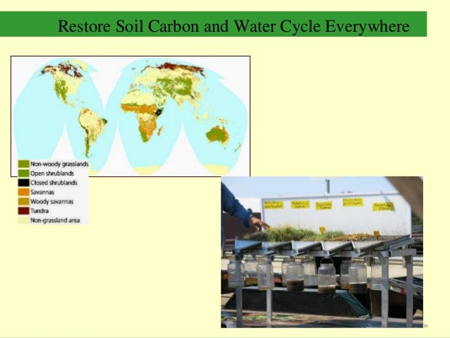 Restore Soil Carbon and Water Cycle Everywhere 16