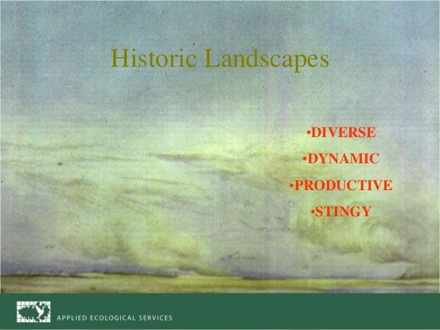 "Steve Apfelbaum, ""Emulating Nature"" Slide 2"