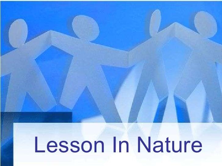 Lesson In Nature