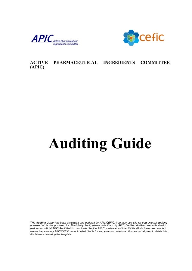 Apic Auditing Guide201008