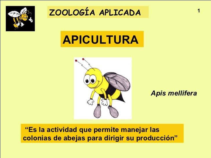 "ZOOLOGÍA APLICADA                              1           APICULTURA                                     Apis mellifera ""..."
