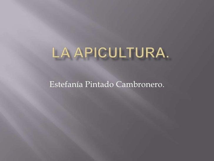 La apicultura.<br />Estefanía Pintado Cambronero.<br />