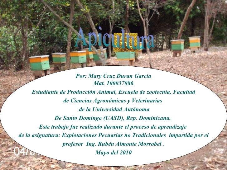 Apicultura Por: Mary Cruz Duran Garcia Mat. 100037086 Estudiante de Producción Animal, Escuela de zootecnia, Facultad de C...