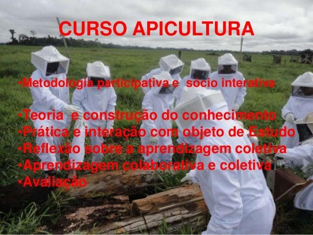 CURSO APICULTURA•Metodologia participativa e sócio interativa•Teoria e construção do conhecimento•Prática e interação com ...