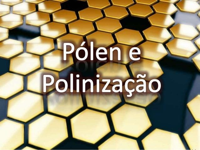 """Pólen O pólen (do grego """"pales"""" = """"farinha"""" ou """"pó"""") é o conjunto dos minúsculos grãos produzidos pelas flores das angiosp..."""