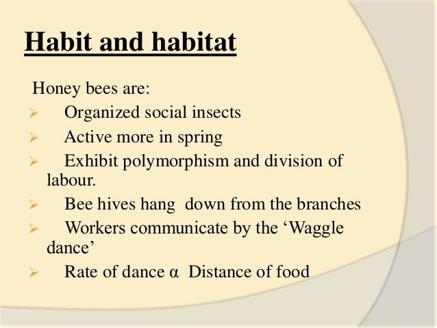 Apiculture: introduction, species types and different ...