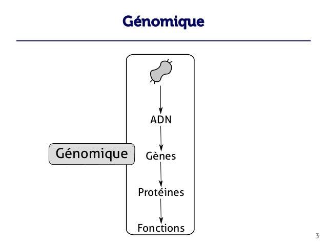 Génomique 3    