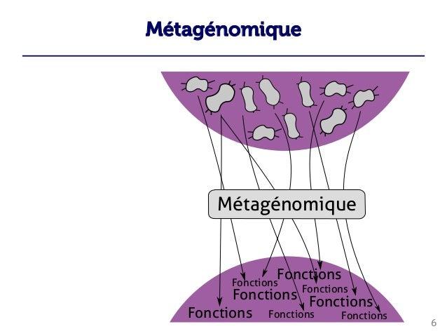 Métagénomique 6        