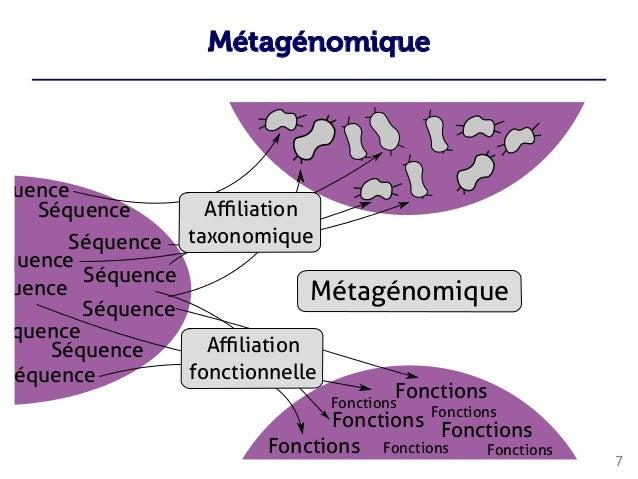 Métagénomique 7          ...