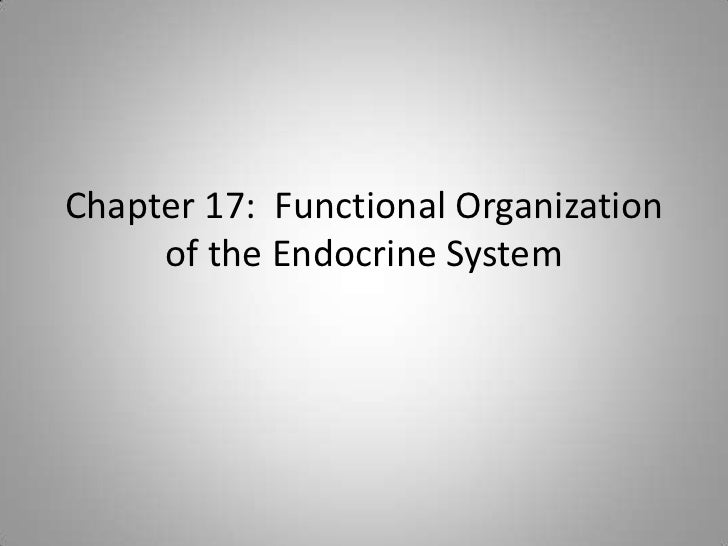 Chapter 17: Functional Organization     of the Endocrine System