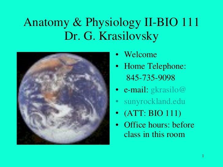 Anatomy & Physiology II-BIO 111 Dr. G. Krasilovsky <ul><li>Welcome </li></ul><ul><li>Home Telephone:  </li></ul><ul><li>  ...