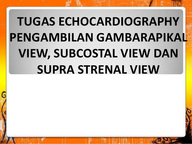 TUGAS ECHOCARDIOGRAPHY PENGAMBILAN GAMBARAPIKAL VIEW, SUBCOSTAL VIEW DAN SUPRA STRENAL VIEW