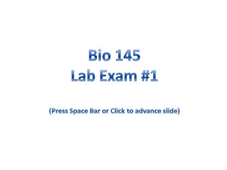 A&P I Lab Exam 1