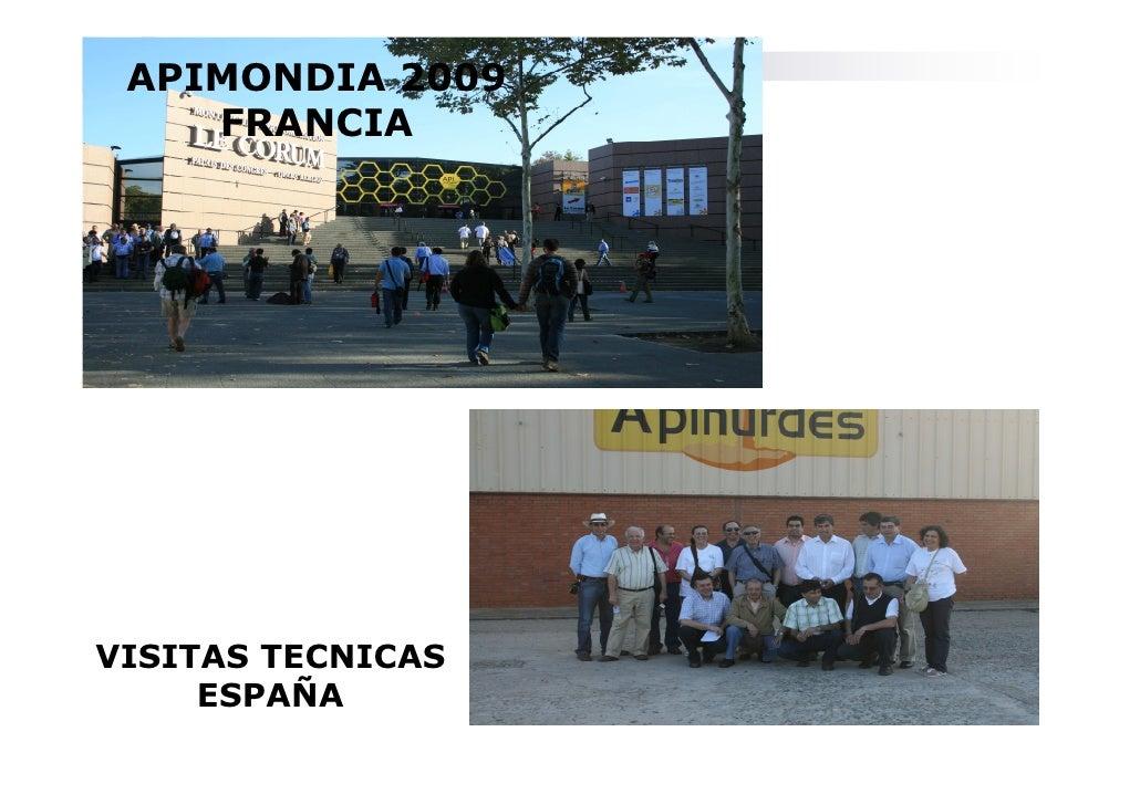 APIMONDIA 2009     FRANCIA     VISITAS TECNICAS      ESPAÑA