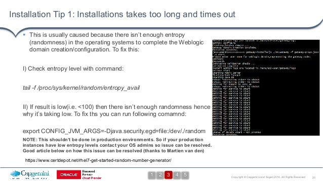 20Copyright © Capgemini and Sogeti 2016. All Rights Reserved Installation Tip 1: Installations takes too long and times ou...