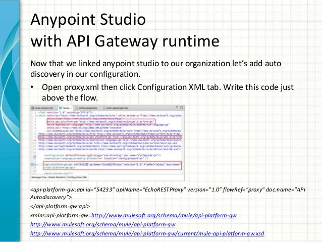 API Proxy Auto Discovery - 웹